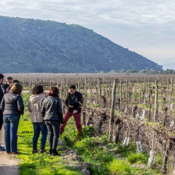 terroir-terramater-maipo-travel-tours