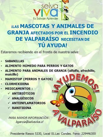 Las mascotas de #Valparaíso necesitanayuda
