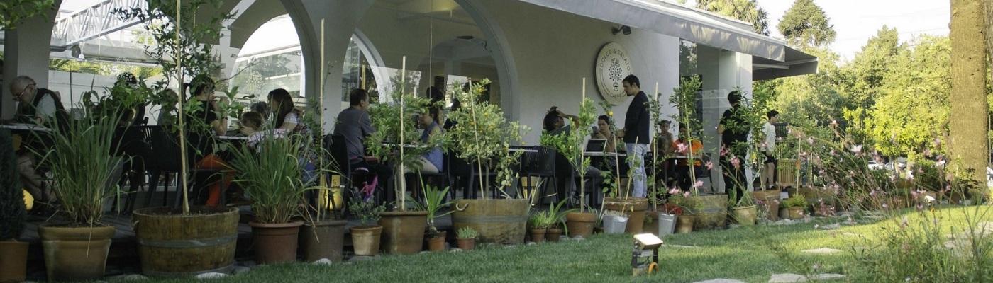 solce y salato jardin