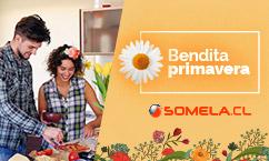 Somela Chile