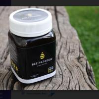 ¿Una miel con alto poder antibacterial? Conoce Bee Patagon