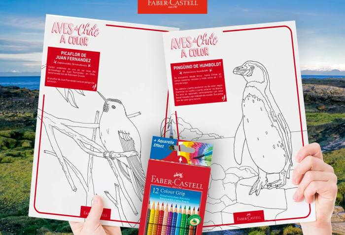 AVES DE CHILE FABER-CASTELL
