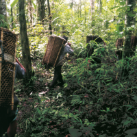 Natura &Co América Latina producirá ítems esenciales y alcohol en gel en la región